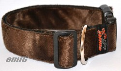 Fellhalsband brown bear