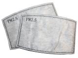 SM PM2.5 Filter